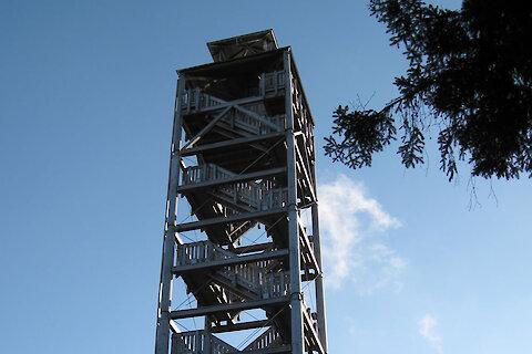 Aussicht vom Lusen im Nationalpark Bayerischer Wald